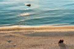 Couples aînés au coucher du soleil sur la plage Images libres de droits