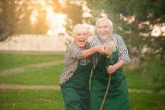 Couples aînés ayant l'amusement Image libre de droits