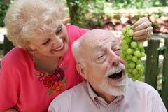 Couples aînés ayant l'amusement Photographie stock libre de droits
