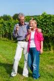 Couples aînés ayant la promenade avec la crême glacée Images stock