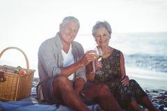 Couples aînés ayant un pique-nique Image libre de droits