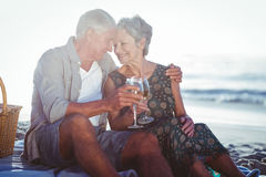 Couples aînés ayant un pique-nique Photographie stock libre de droits