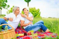 Couples aînés ayant un pique-nique Photographie stock