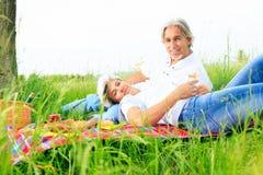 Couples aînés ayant un pique-nique Images stock