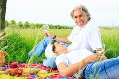 Couples aînés ayant un pique-nique Photo libre de droits