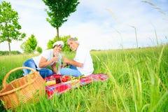 Couples aînés ayant un pique-nique Image stock