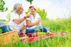 Couples aînés ayant un pique-nique Photos stock