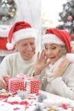 Couples aînés célébrant Noël Photographie stock libre de droits