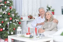 Couples aînés célébrant Noël Photos libres de droits