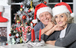 Couples aînés célébrant Noël Photo libre de droits