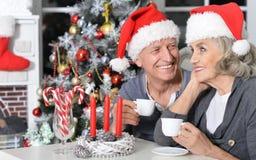 Couples aînés célébrant Noël Photos stock