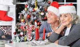 Couples aînés célébrant Noël Image libre de droits