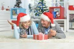 Couples aînés célébrant Noël Images libres de droits