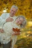 Couples aînés détendant en stationnement Photo libre de droits