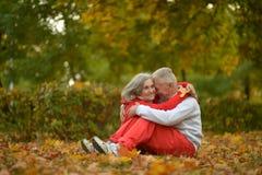 Couples aînés détendant en stationnement Photos libres de droits