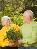 Couples aînés dans l'amour Photo libre de droits