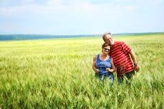 Couples aînés dans le domaine de blé Image stock