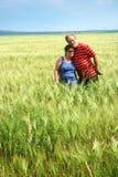 Couples aînés dans le domaine de blé Photos libres de droits