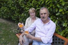 Couples aînés dans le jardin images libres de droits