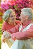 Couples aînés dans le jardin Photos libres de droits