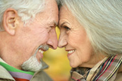 Couples aînés de sourire Images stock