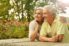 Couples aînés de sourire Photos libres de droits