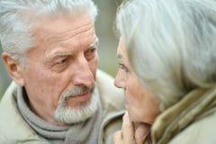 Couples aînés de sourire Photo libre de droits