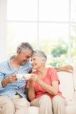 Couples aînés de sourire grillant avec des tasses Photo stock