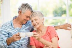 Couples aînés de sourire grillant avec des tasses Photo libre de droits
