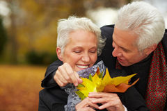 Couples aînés flirtant dans une forêt Images libres de droits