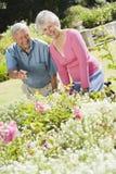 Couples aînés fonctionnant dans le jardin Image stock