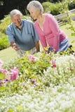 Couples aînés fonctionnant dans le jardin Image libre de droits