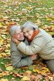 Couples aînés heureux Photographie stock