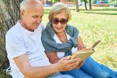 Couples aînés heureux en stationnement Image stock