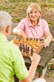 Couples aînés heureux jouant aux échecs Photographie stock