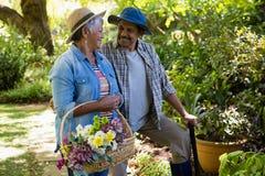 Couples aînés marchant dans le jardin Photographie stock libre de droits
