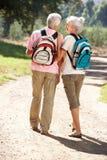 Couples aînés marchant dans le pays Images stock