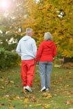 Couples aînés marchant en stationnement Photos libres de droits