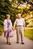 Couples aînés marchant en stationnement Images stock
