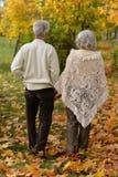 Couples aînés marchant en stationnement Photo libre de droits