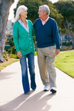 Couples aînés marchant en stationnement ensemble Photographie stock libre de droits