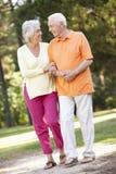 Couples aînés marchant en stationnement ensemble Photo libre de droits
