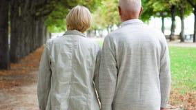 Couples aînés marchant en stationnement Vie moderne active après retraite Famille appréciant le temps ensemble banque de vidéos