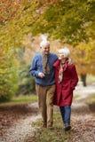 Couples aînés marchant le long du chemin d'automne Image libre de droits