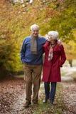 Couples aînés marchant le long du chemin d'automne Photos libres de droits