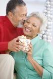 Couples aînés permutant un cadeau de Noël Photographie stock libre de droits