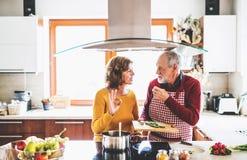Couples aînés préparant la nourriture dans la cuisine Photographie stock libre de droits