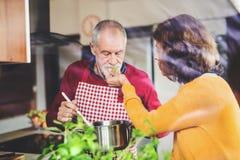 Couples aînés préparant la nourriture dans la cuisine Images libres de droits