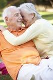 Couples aînés romantiques en stationnement Images libres de droits