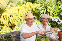 Couples aînés se reposant dans leur jardin Images stock